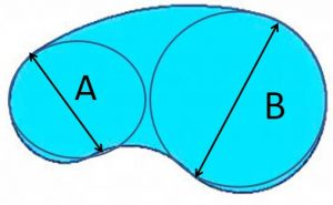 kidney-shape-object